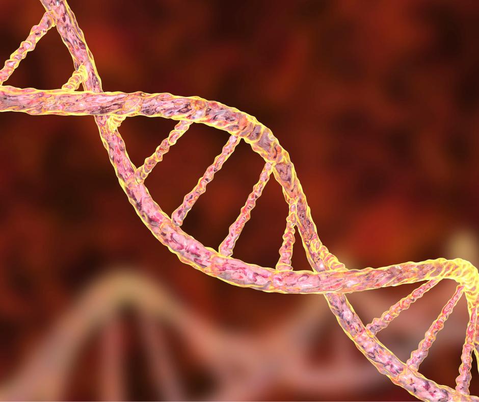 gene síndrome de angelman